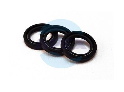 KIT 2 - OIL SEAL  - Kit Simeringuri Ulei pompa presiune