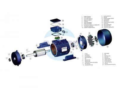 Motor Trifazic Nicolini pentru pompe presiune